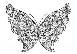 Piękny motylek