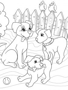 Rodzina psów