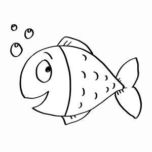 Zdziwiona rybka