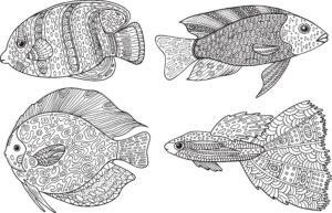 Cztery rybki