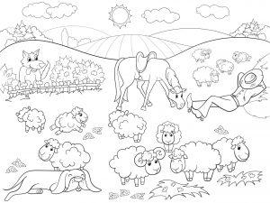 Konik i owce