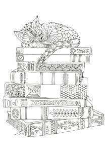 Kotek śpiący na książkach