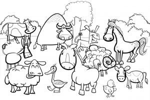 Konik i kaczka na farmie