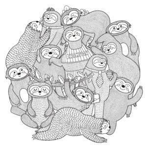Grupa fok