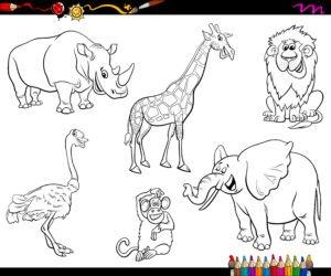 Nosorożec, struś i żyrafa