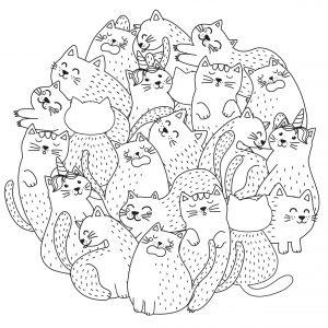 Grupa kotków