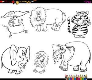 Lew, tygrys i bawół