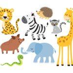 Kolorowanki zoo Afryka