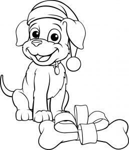 Pies i prezent