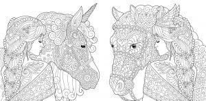 Koń i jednorożec