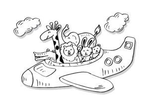 Krokodyl, żyrafa w samolocie