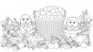 Psy w doniczkach