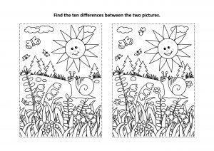 Znajdź różnice - kwiaty