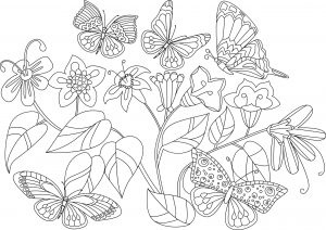 Motylki i kwiatki