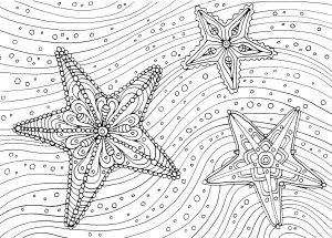 Pięcioramienne gwiazdy