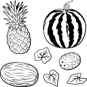 Arbuz, melon i kokos