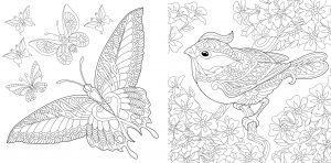 Ptak i motyl w ogrodzie