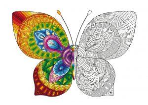 Tęczowy motylek