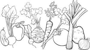 Kalarepa, marchewka i bakłażan