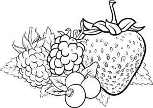 Truskawki i winogrono