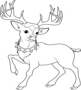 Piękny renifer Rudolf