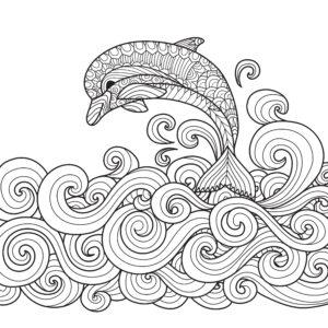 Delfin i fale