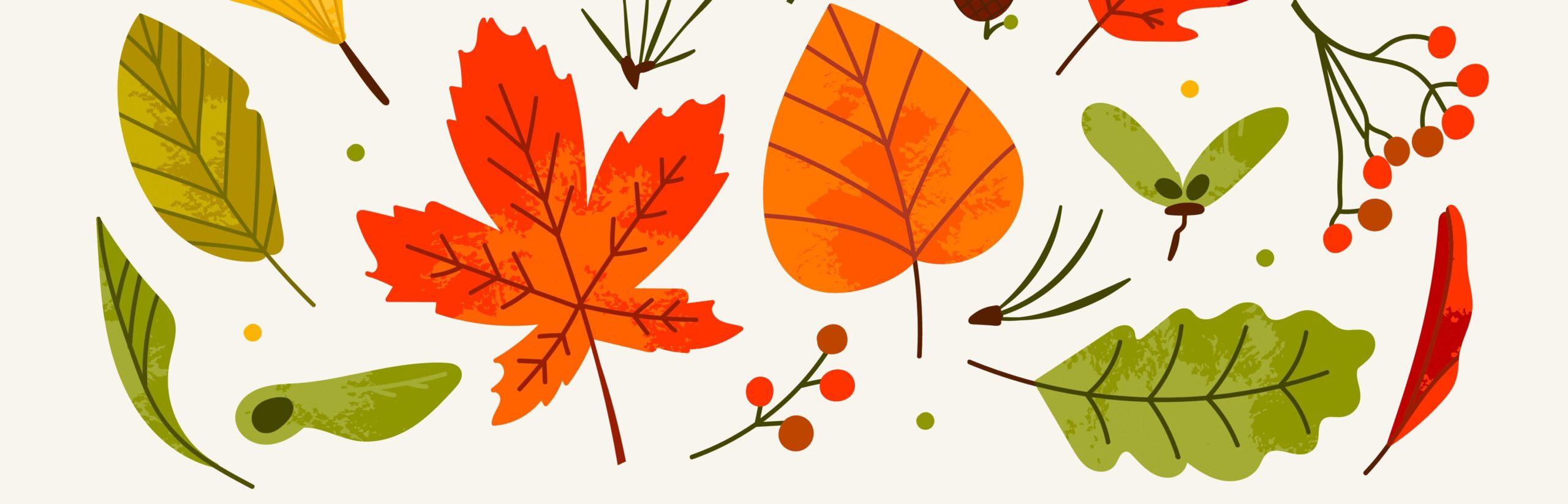 Kolorowanki liście/jesień