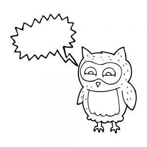 Co mówi sowa