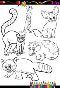 Wesołe zwierzątka