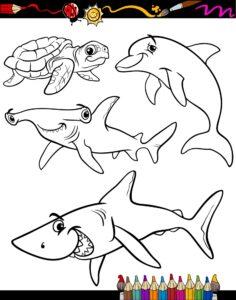 Ryba młot, żółw i delfin