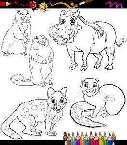 Guziec i zwierzątka z Afryki