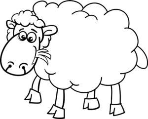 Owieczka na trawie