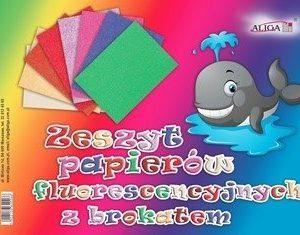 Zeszyt papierów kolorowych fluorescencyjnych b5
